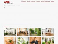 amg-hamburg.de Webseite Vorschau
