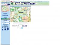 ammersbek.alpha-kart.com