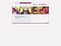 blumoer.com