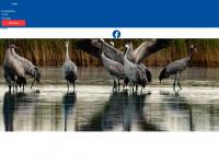 kranich-schutz.de