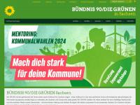 gruene-sachsen.de