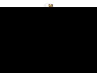 avion-showband.de Webseite Vorschau