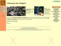 xtelligent.de Webseite Vorschau