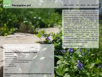 pwf-kassel.de