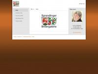 sprendlinger-bildergalerie.de