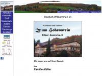 zum-hohenstein.de Webseite Vorschau
