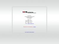 mv-systems.com