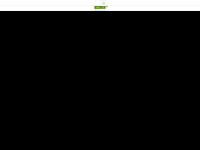 schulz-steuerberatung.de