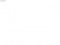 amra-consulting.de Webseite Vorschau