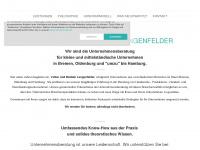 unternehmensberatung-lengenfelder.de Thumbnail
