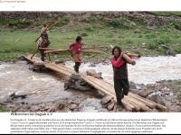 dagyab.de