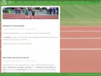 lg-papenburg-aschendorf.de Webseite Vorschau