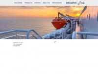 hamannag.com