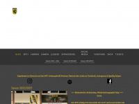 btv-handball.de