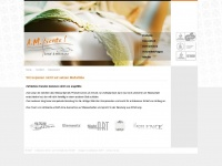 ambiente-wasserbetten.de Webseite Vorschau
