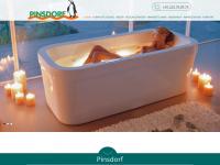 pinsdorf-bonn.de