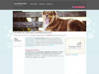 hundezuechter-info.de Webseite Vorschau