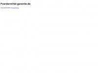 foerdermittel-garantie.de Webseite Vorschau