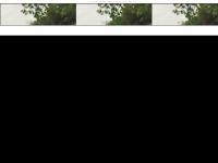kids.mensa.de Webseite Vorschau