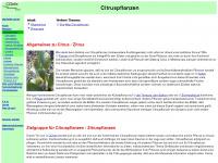 citruspflanzeninfo.de