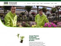 ggg-gruenewald.com