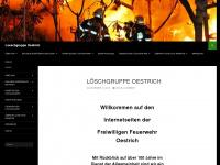 loeschgruppe-oestrich.de Webseite Vorschau