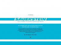 sauerstein-ventilatoren.de