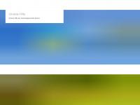 selters-ww.de