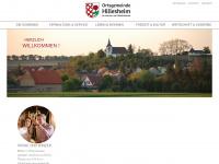 hillesheim-rhh.de
