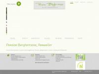 Pension-bergterrasse.de
