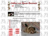 reinhard-collies.de