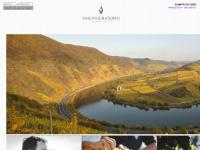 amlinger.de Webseite Vorschau