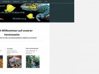 aquarienfreunde-homburg.de