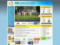 ssv-neustadt-sachsen.de