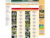 asv-dalbke.de Webseite Vorschau