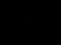 lobu-service.de Webseite Vorschau