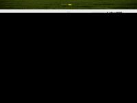 ilsenburger-wg.de
