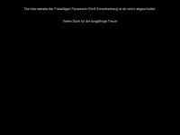 loeschen.istcool.de Webseite Vorschau