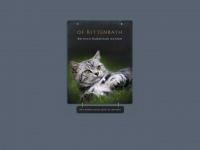 kittenbath.de Webseite Vorschau