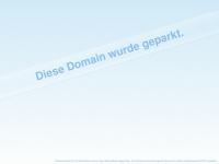 i4net.de Webseite Vorschau