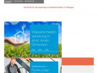 rapid-ws.de