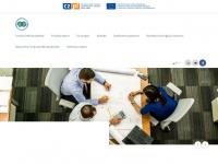 euroregion-glacensis.ng.pl