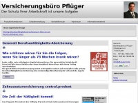 pflueger-consulting.de
