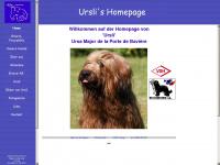 Briard-ursa-major.de