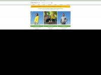 foxxshirts.de