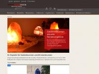 revisage.com