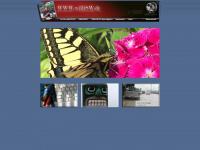 willisw.de