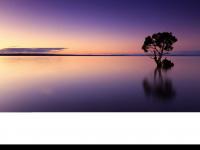 1c-online.de Webseite Vorschau
