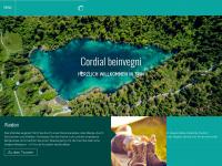 trin-verkehrsverein.ch