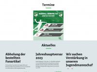 tv-halingen.de Webseite Vorschau